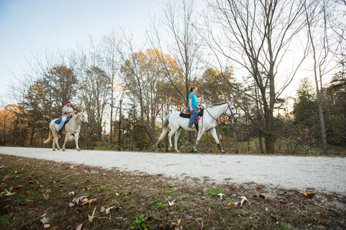 Horse Riding on High Bridge Trail