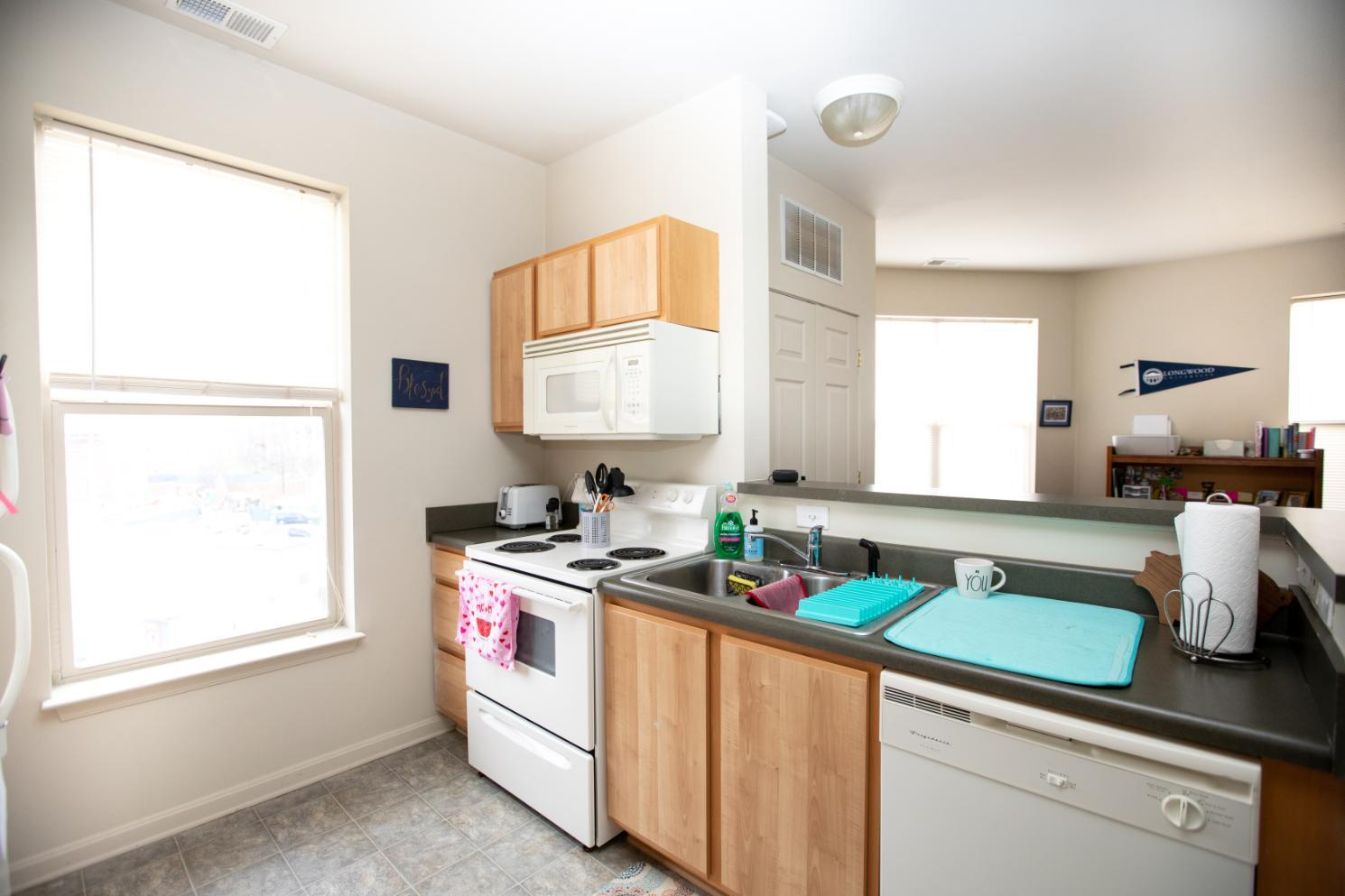 Longwood Landings Studio Apartment; view of kitchen from living area and bed area
