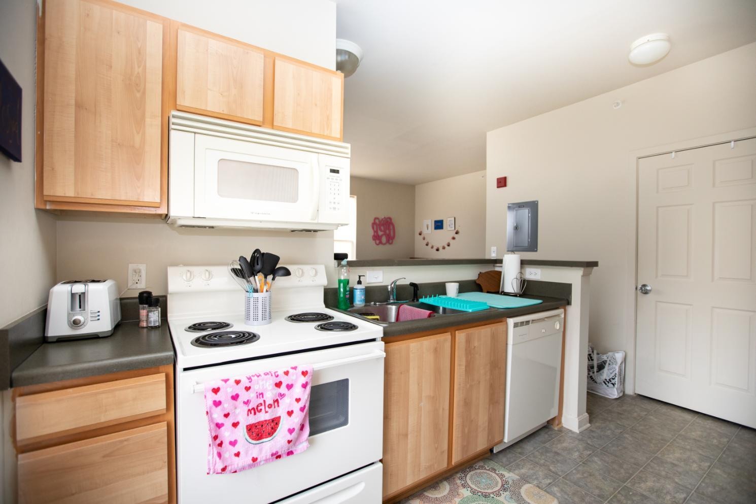 Longwood Landings Studio Apartment; view of stove and microwave and counter looking into the living area