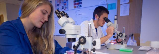 Major grant from National Science Foundation boosts science programs, provides scholarships
