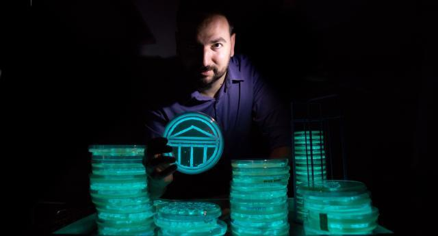 Art student with bioluminescent microbe projects