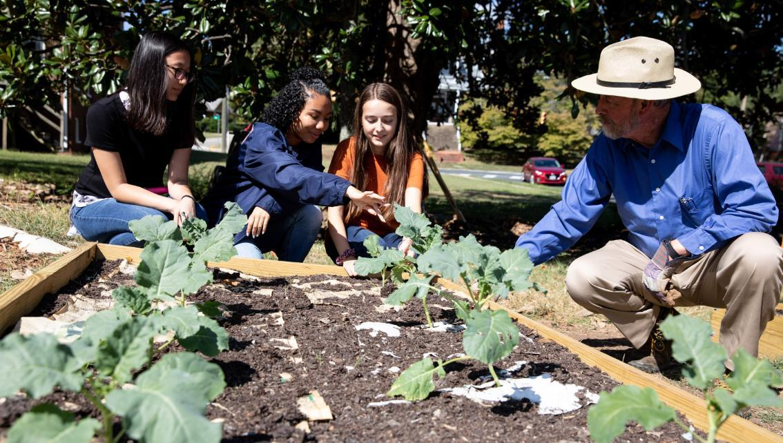 Dr. Michael Lund (right) checks the progress of the broccoli plants with Longwood students (left to right) Kelly Jarratt, Mali Cox and Rebecca Mills.