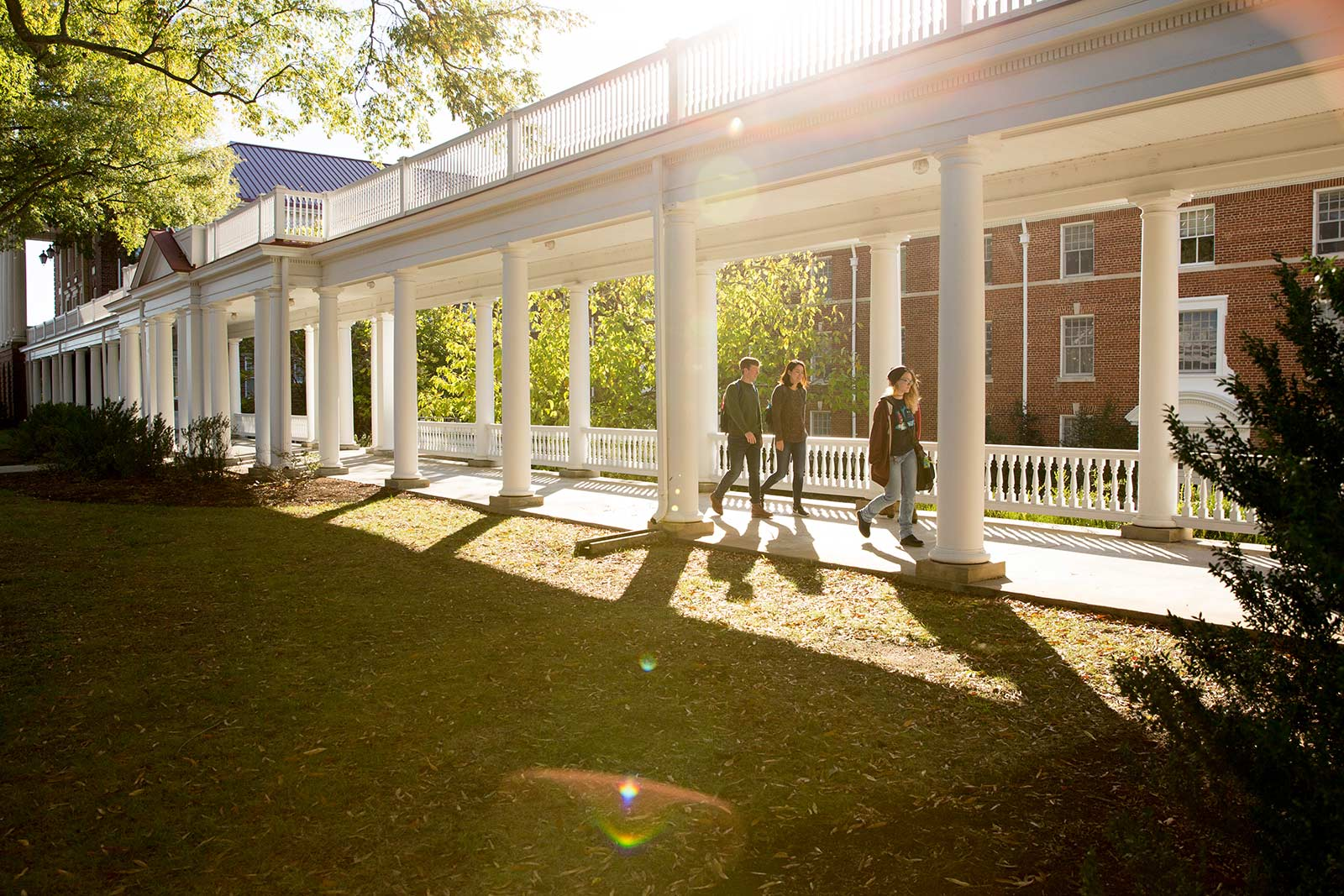 When the light is just right, walking to class is like walking through nearly 200 years of history. The Colonnades hold a special place on campus—the traditional spot for iconic graduation photos and, shhhhhh, the start of CHI walks.