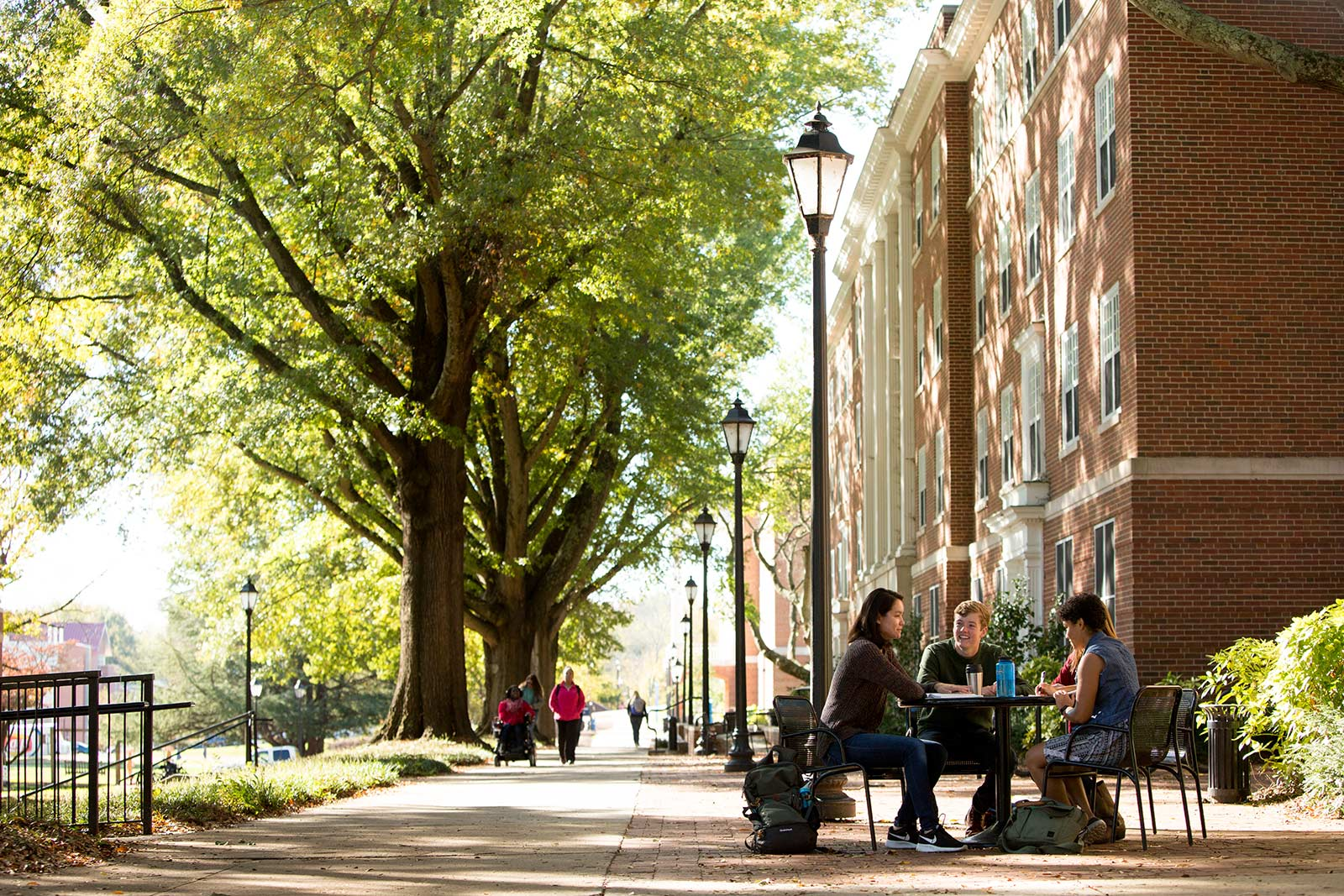 Campus is full of beautiful spots to pull up a chair and have a coffee, join an impromptu study session or just spend time with friends after class.